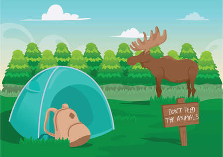 wildlife reserve: camping