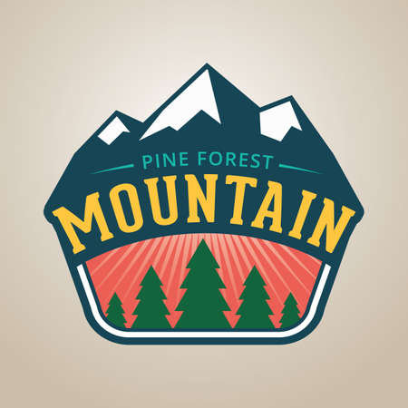 pine forest: pine forest