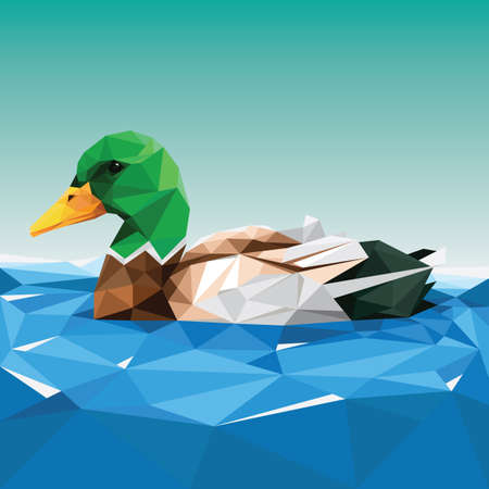 faceted: faceted duck