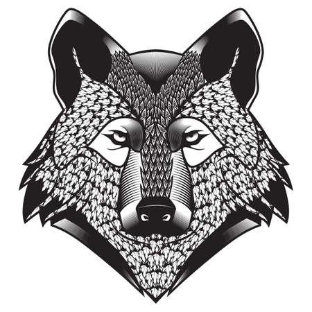 lupus: wolf Illustration