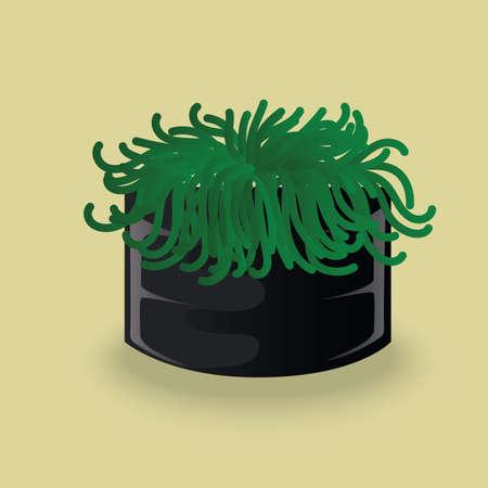 seaweed: sushi seaweed Illustration