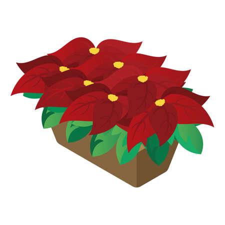 christmas poinsettias flower Stock Vector - 81485220