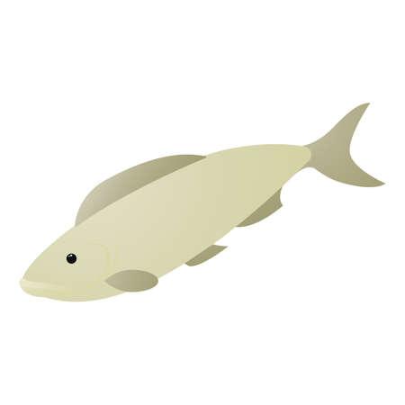 fish Reklamní fotografie - 81485565