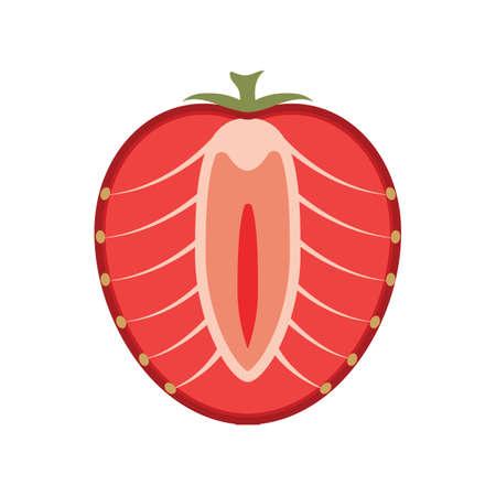 strawberry: strawberry Illustration