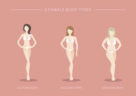 drie vrouwelijke lichaamstypes Stock Illustratie