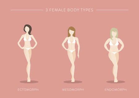 three female body types 向量圖像