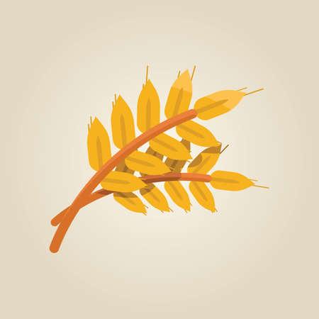 grain: grain Illustration
