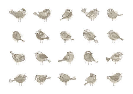 oviparous: collection of birds