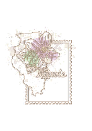viola: illinois map with flower