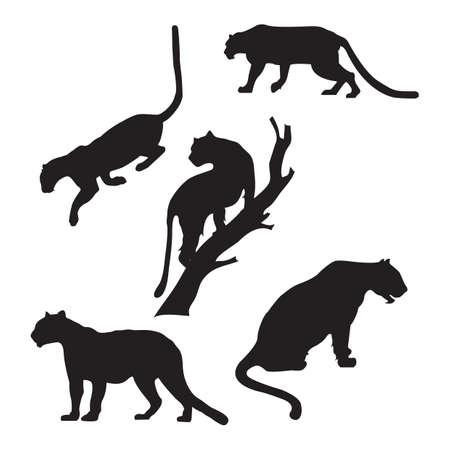 set van tiger silhouettes