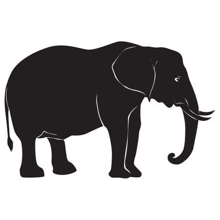 silhouette of elephant Illustration