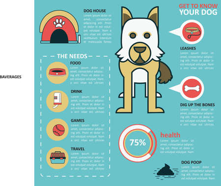 dog health: infographic of dog health