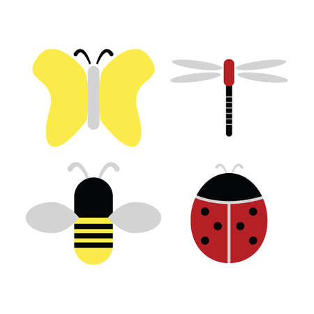 insects: insects Illustration