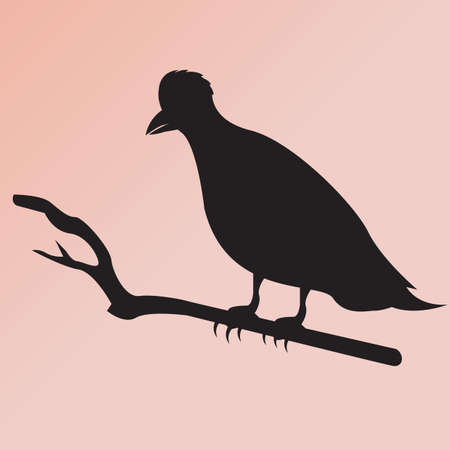 perched: silhouette of a bird perched on a branch