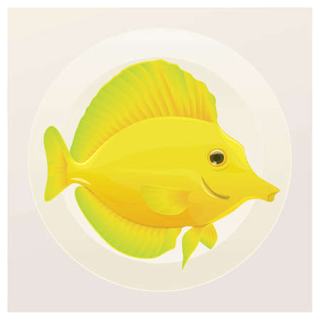 yellow tang: yellow tang Illustration