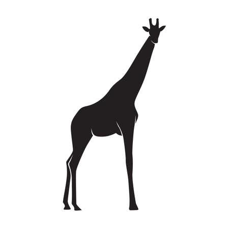 silhouet van een giraffe