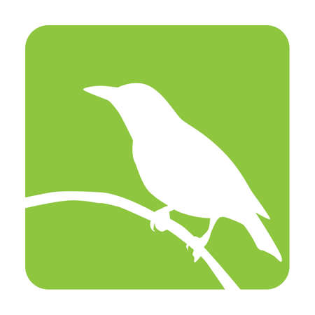 perched: bird perched on branch Illustration