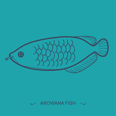 arowana: arowana fish