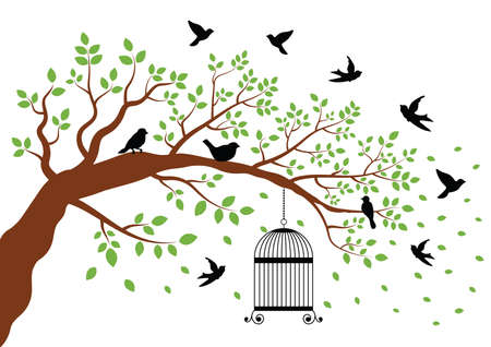 birdcage: birdcage hanging from a tree with birds nearby