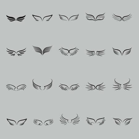 feathe: set of wings Illustration