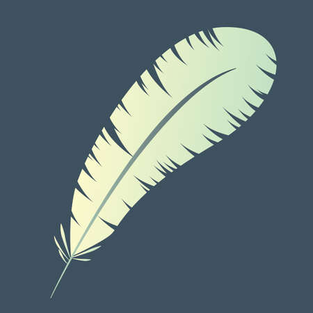 fluff: feather