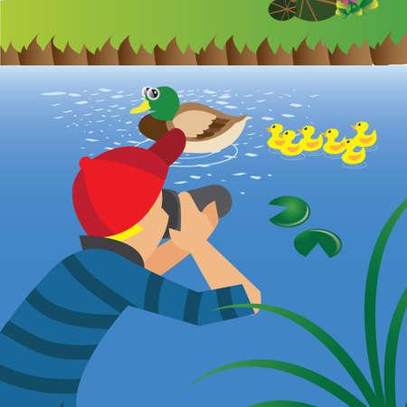photograph: man taking photograph of ducks Illustration