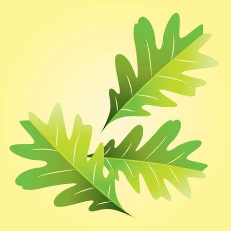 leaf: oak leaf