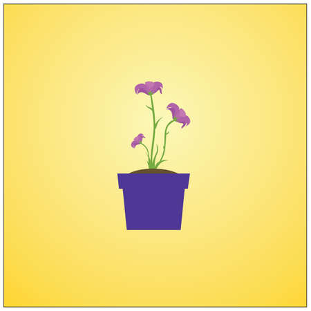 potted: potted plant with flowers