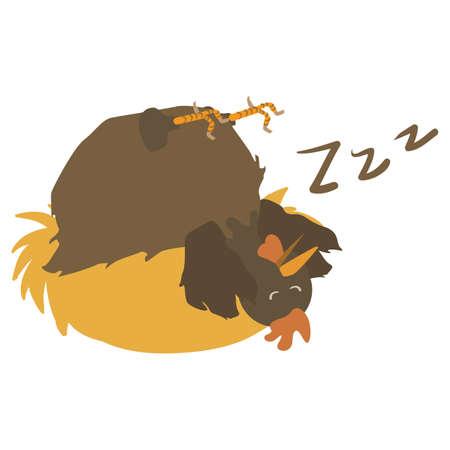 snoring: hen snoring