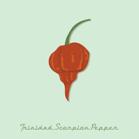 Trinidad escorpión pimienta Foto de archivo - 81418730