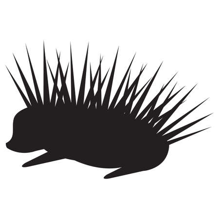silhouette of porcupine
