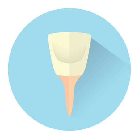 incisor: tooth