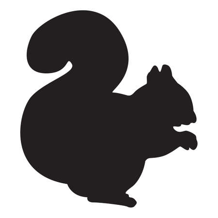 silhouette of squirrel