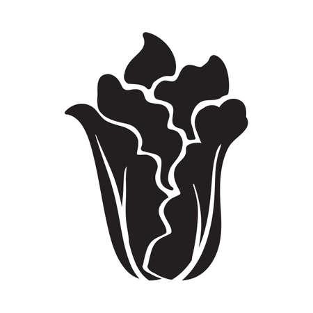 silhouette of lettuce