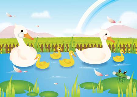 garden pond: ducks and frog in pond Illustration