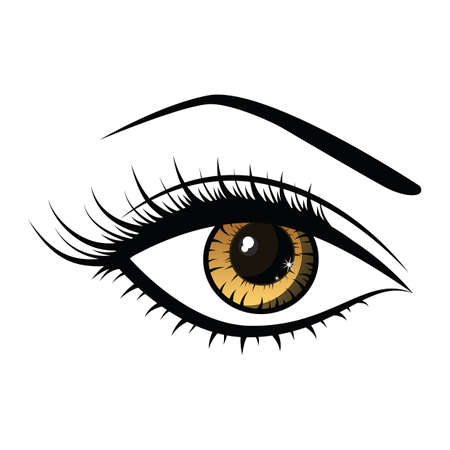 beautiful female eye Stock Illustratie