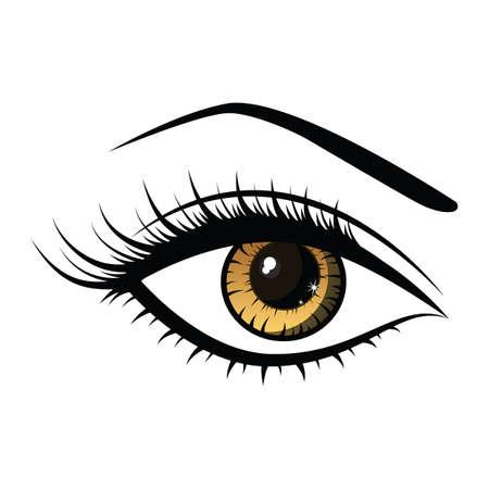 beautiful female eye Illustration