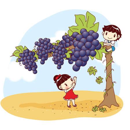 plucking: kids plucking giant grapes