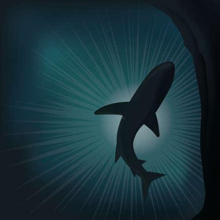 whale underwater: whale underwater Illustration