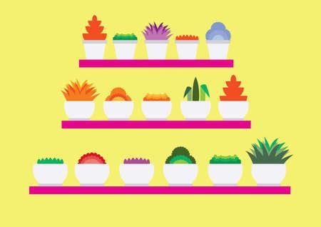 flower pots: flower pots in rack