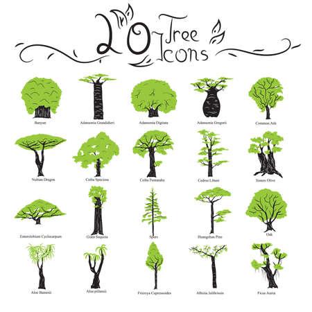 ash tree: tree icons