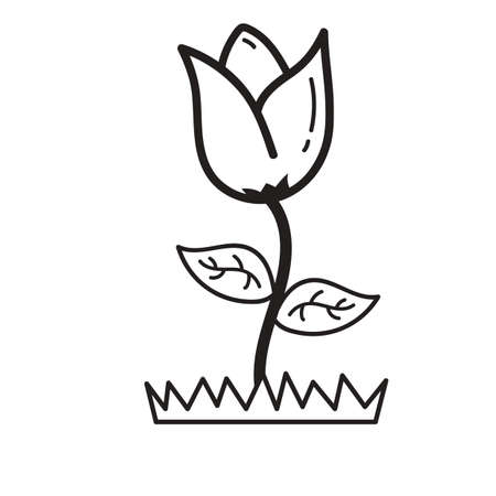 pastures: flower