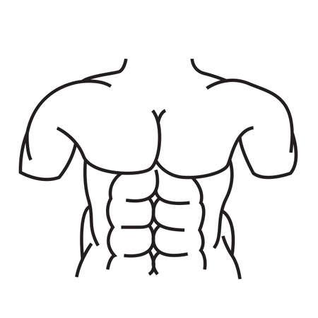 abdomen: human abdomen