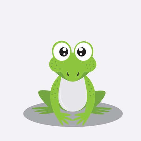 bullfrog: frog