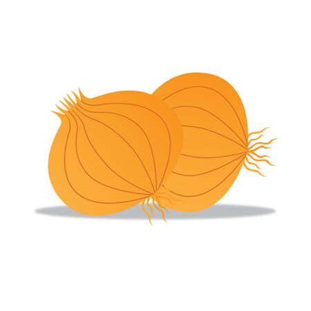 cebollas: cebollas maduras
