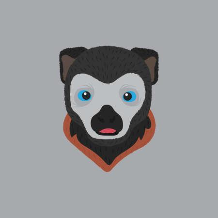 lemur: lemur