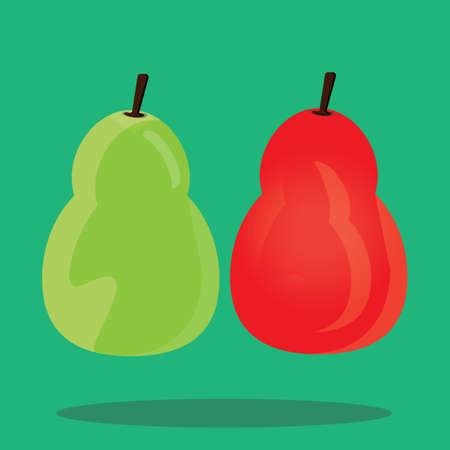 butternut squash: butternut squash Illustration