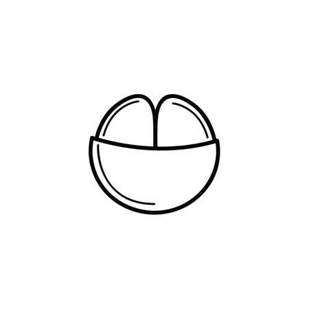 mangosteen: peeled mangosteen
