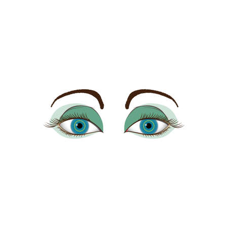brows: womans eye Illustration