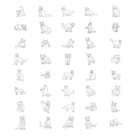von Katzen eingestellt Vektorgrafik